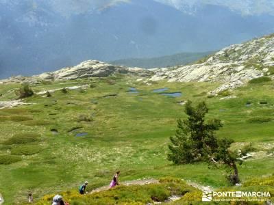 Lagunas de Pelañara-Peña Cítores- Guadarrama; senderistas singles madrid senderismo